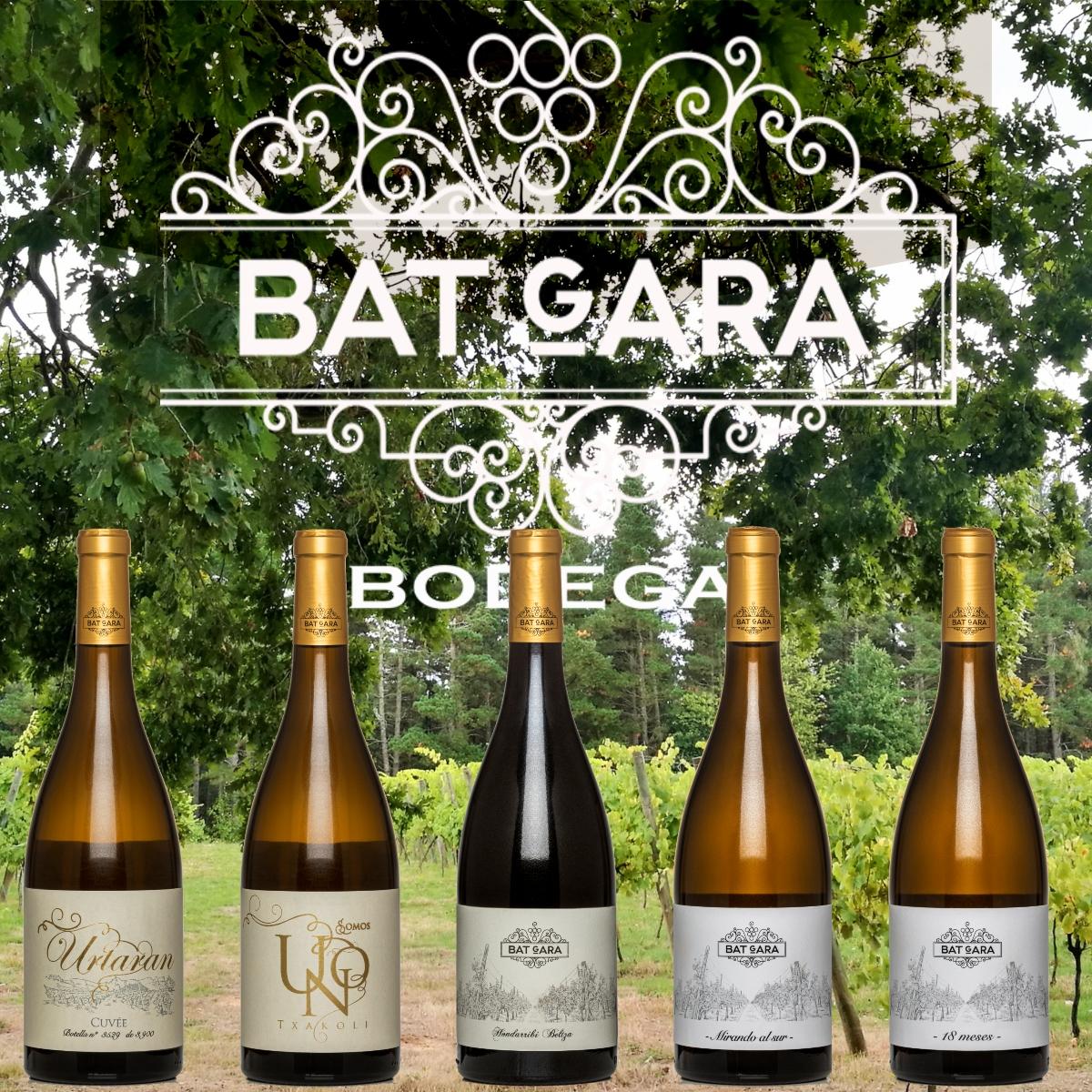 bodega_batgara-viñedo_batgara-txakoliuno-txakoliurtaran (3)